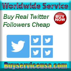 Buy Real Twitter Followers Cheap